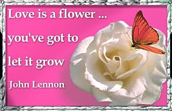 flower grow love